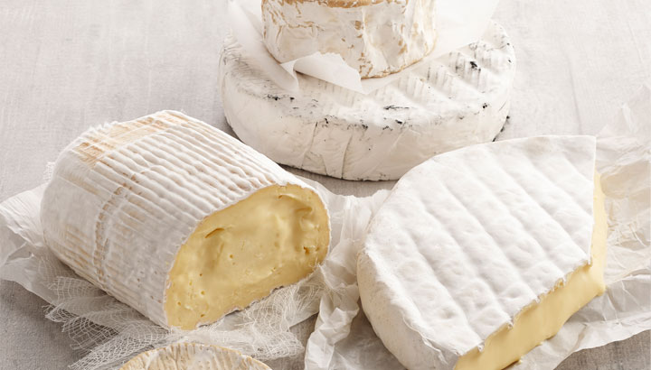 An image of white mould cheese displayed on a table.