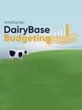 DairyBase budgeting